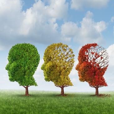 brain antiaging